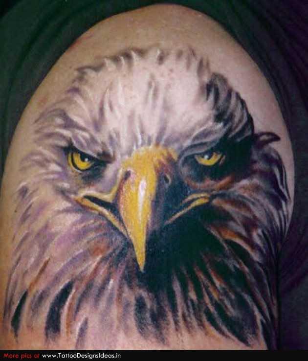 Tatuagem no ombro de um cara - cabeça da águia
