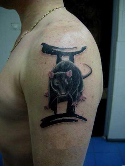 Tatuagem no ombro de um cara - de- rato e seu signo