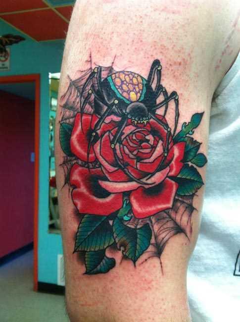 Tatuagem no ombro de um cara - de- teia de aranha, rosa e aranha