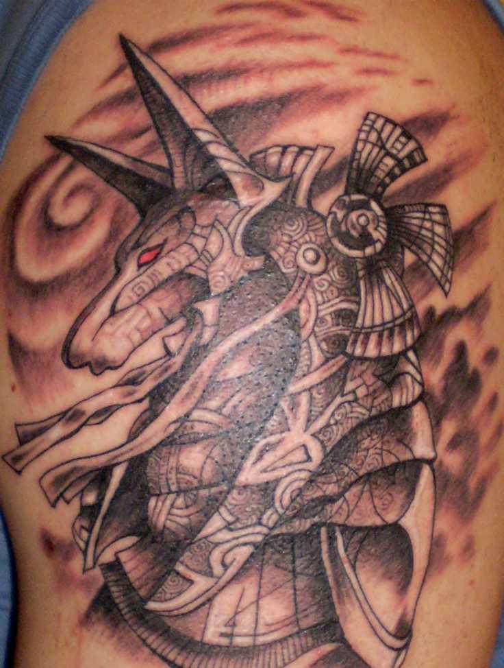 Tatuagem no ombro de um cara - of anubis