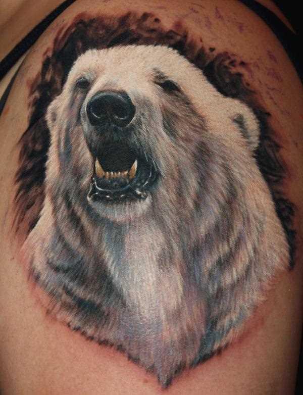 Tatuagem no ombro o homem - urso polar