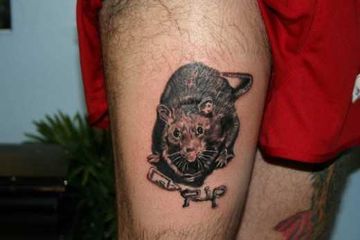 Tatuagem no quadril cara - de- rato
