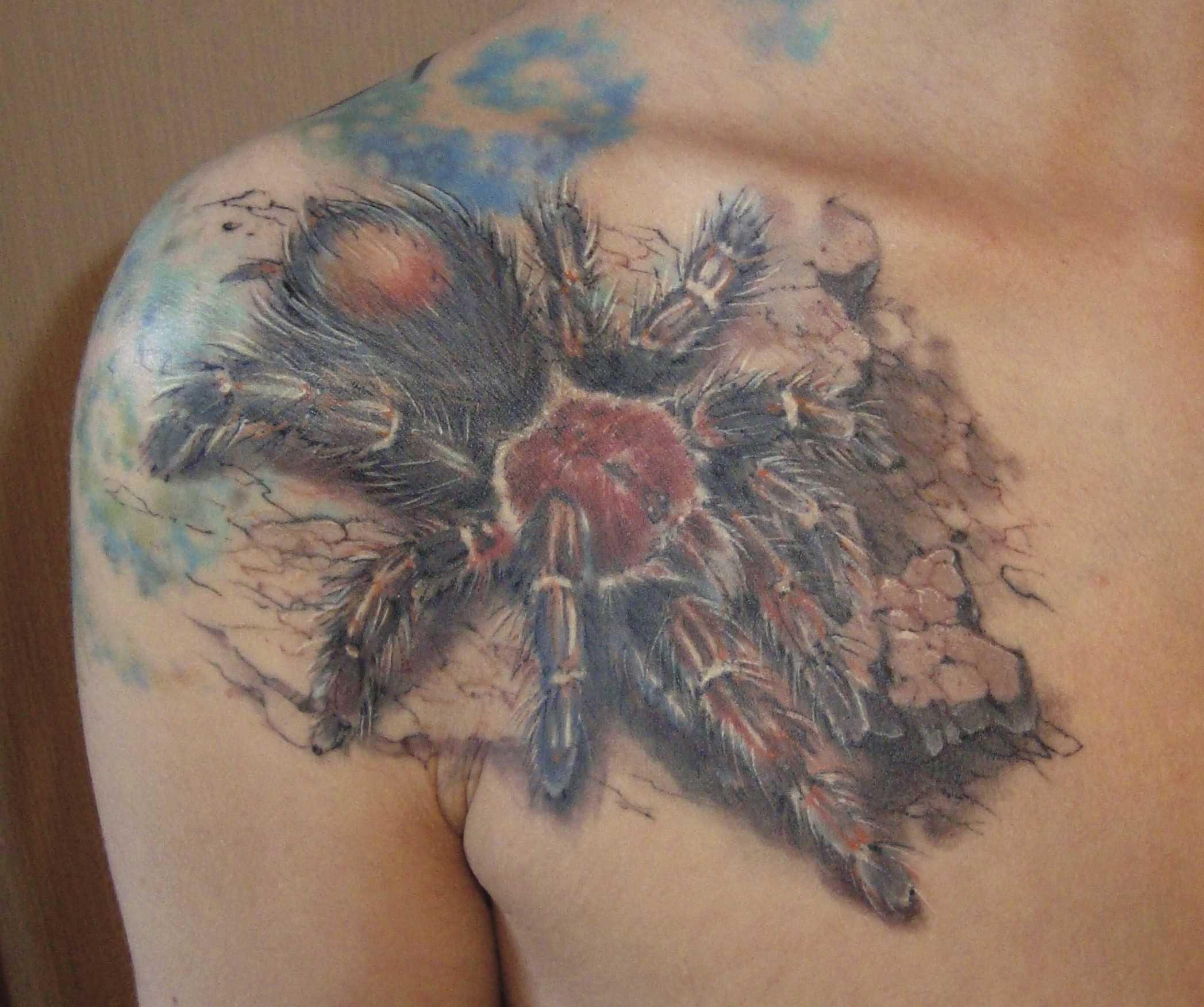 Uma bela tatuagem em seu ombro o homem - aranha