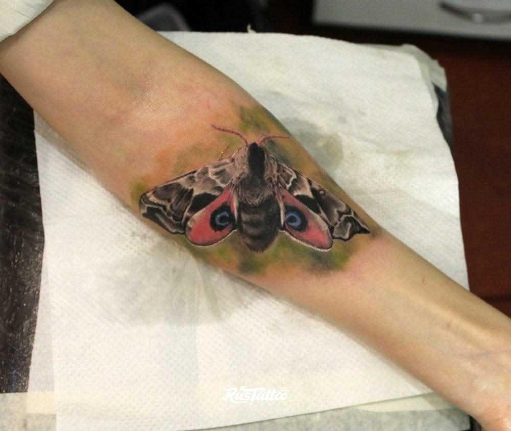 Uma imagem de cor do inseto no antebraço da menina